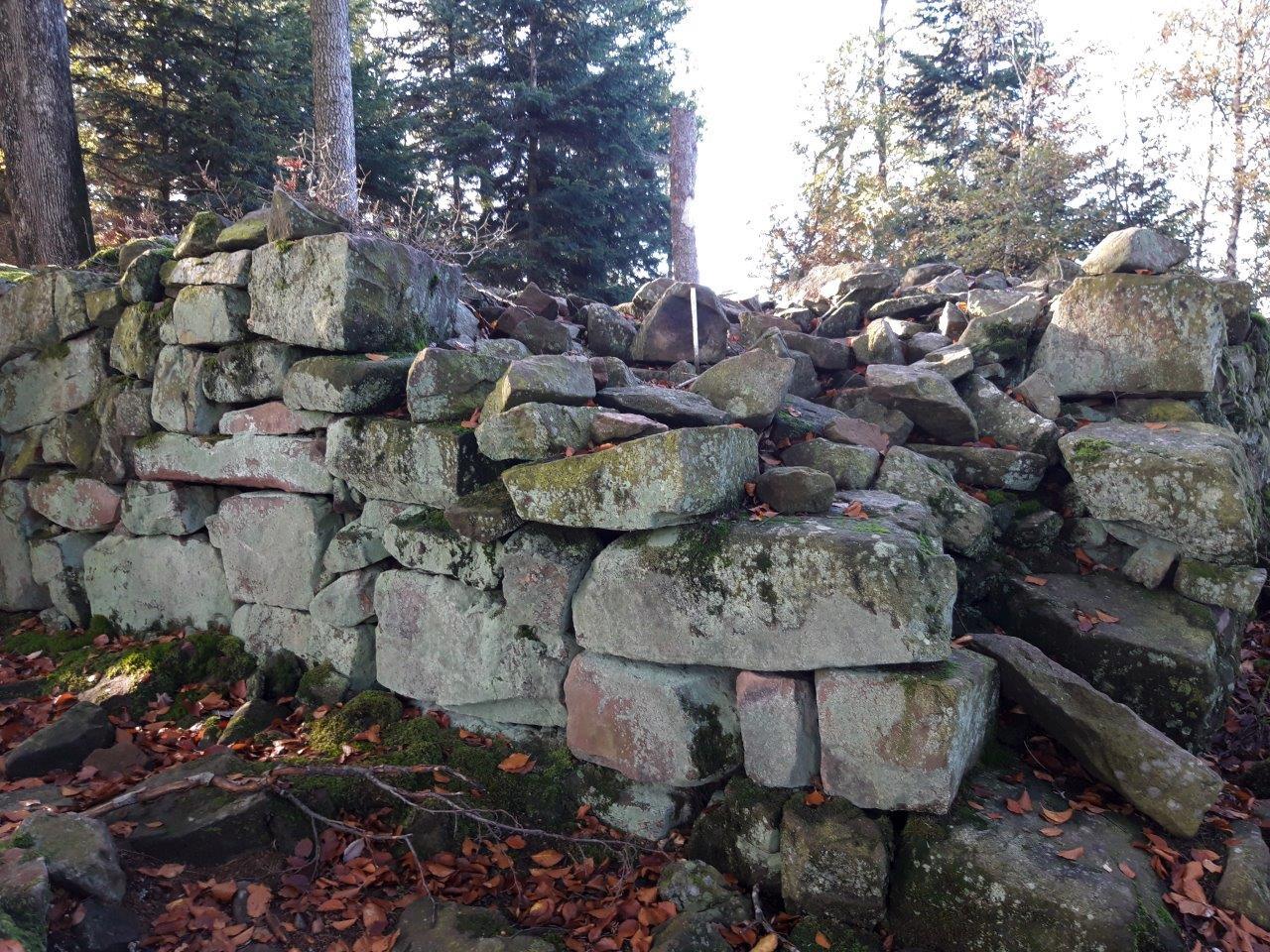 Ruines du petit Ringelstein