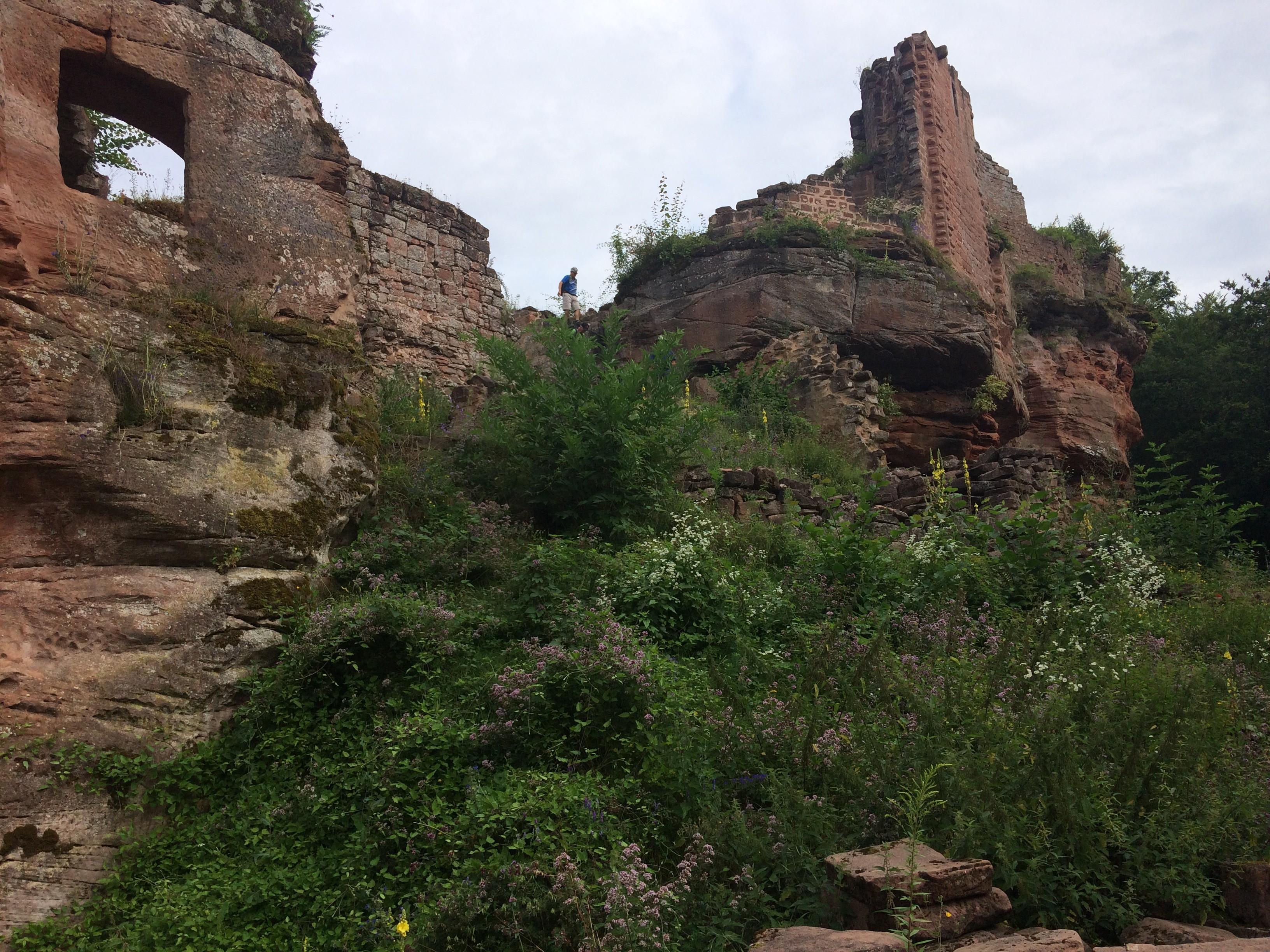 Chateau en ruine du Schoeneck