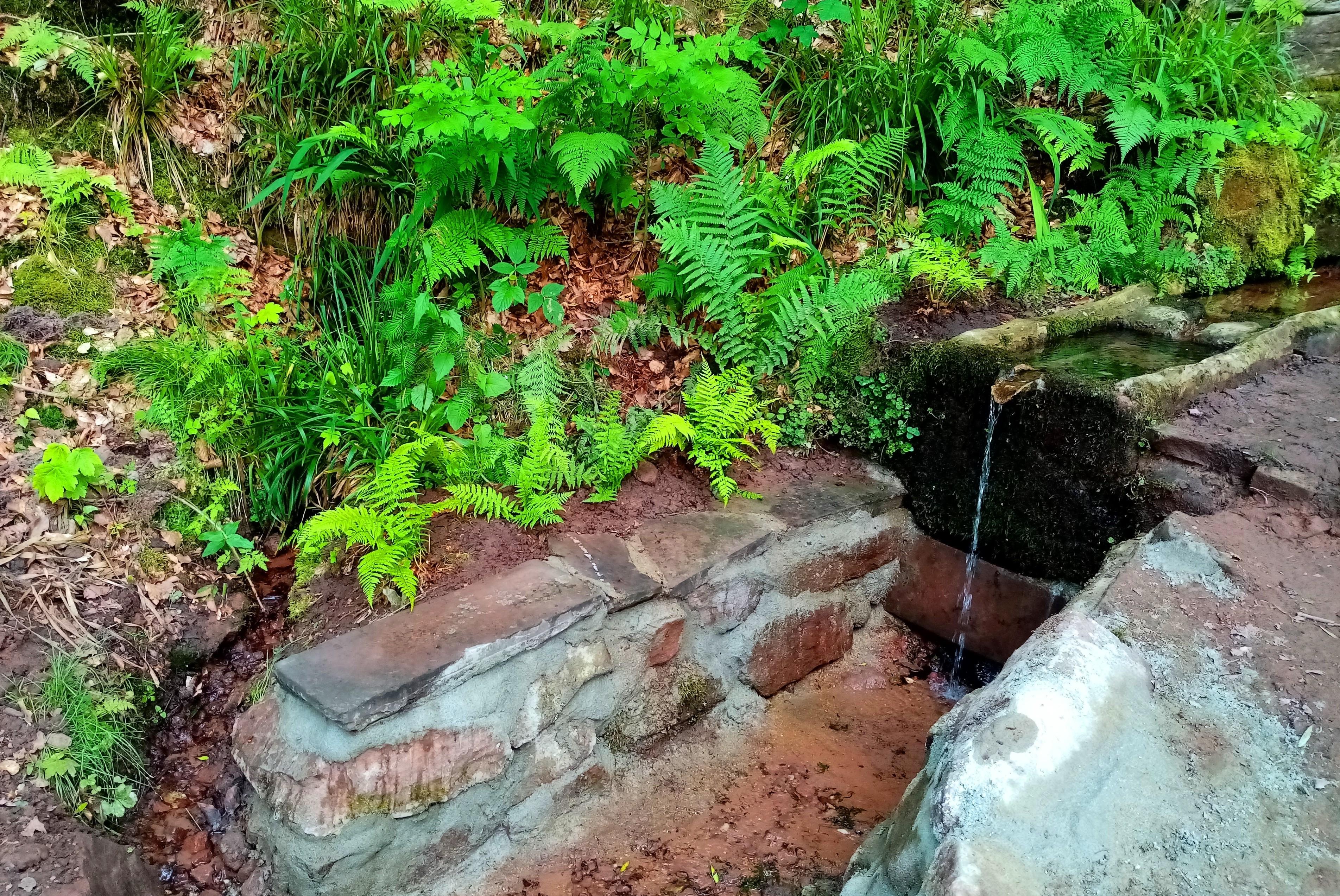 Fontaine melusine