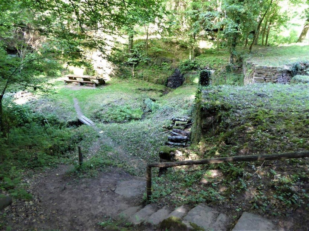 Forêt de Lemberg