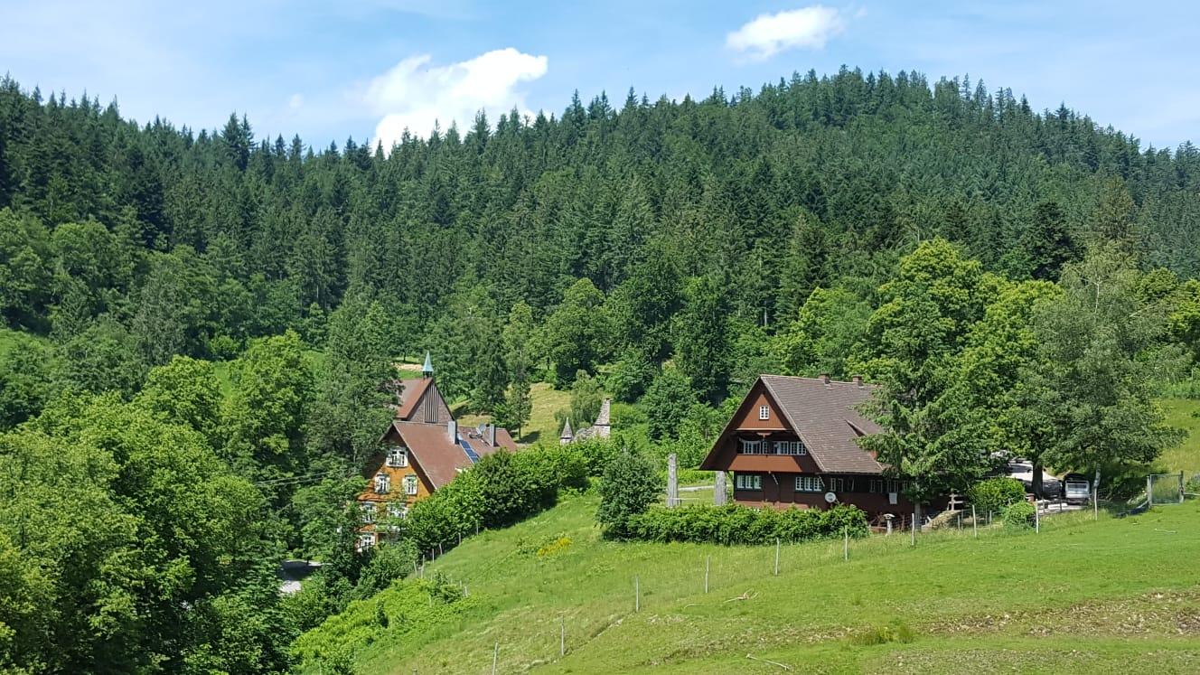 Vallée du Lierbach