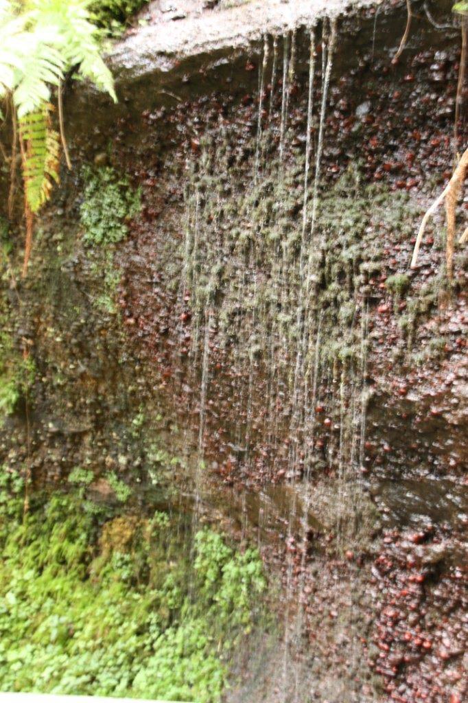 Des fils d'eau qui  s'écoulent du rocher