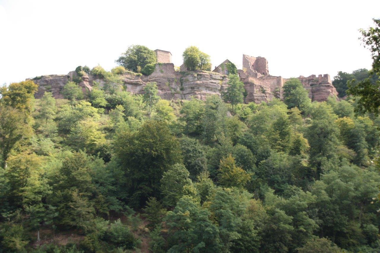 Vue sur le château de Lutzelbourg