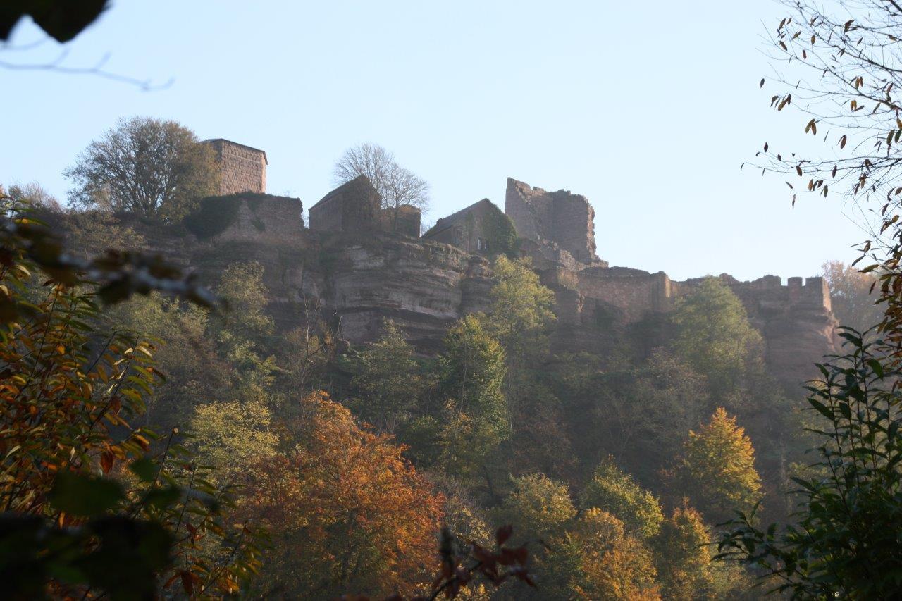 Belle vue sur le château de Lutzelbourg