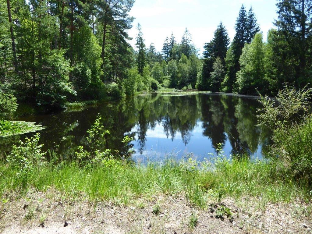 Lac à Lemberg